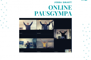 Online pausgympa
